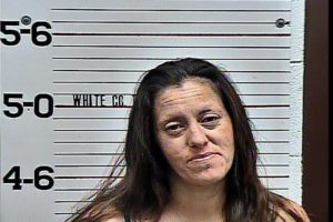 Rebecca McCurry-Falsifying Drug Test-Resisting Official Detention