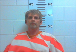 Stewart, Ronald Dale - Domestic Assault