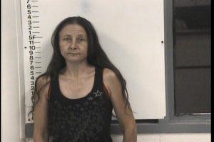 Tollison, Jennifer Cheryl - CC Pick Up Indictment Poss Meth, Poss SCH IV, Sim Poss