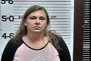Johnson, Heather Michelle - Theft of Property:Shoplifting under $1,000