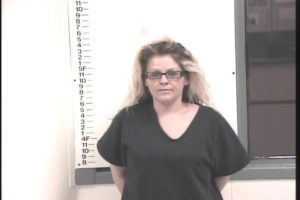 Marlena Bolster-Violation of Probation-Simple Possession-Violation of Probation-Theft