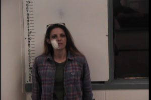 Monica Craig-Theft of Property