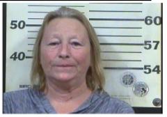 Putnam, Kimberly Lynn - Domestic Assault