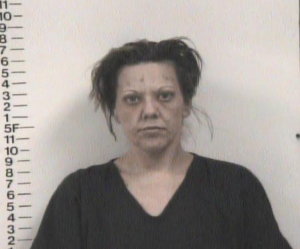 Amanda Borden-Violation of Probation-Fail to Appear or Pay-Attachment Child Suppport-Juvenile