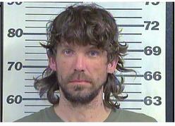 Braswell, Nicholas Andrew - Violation Probation