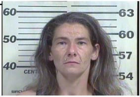 Jenkins, Amanda Leigh - Driving on Revoked:Suspended License
