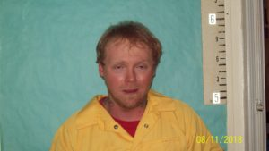 Raymond Stout-DUI-Leaving the Scene of Accident with Injuries-Driving on Suspended License-Fugitive