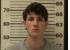 Robert Seitz-Evading Arrest-Driving Without License-Driving Reckless-Violation of Probation