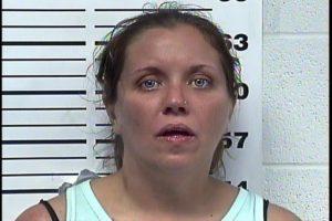 Banks,Erin Marie - Theft of Property; Poss Controlled Substances; Resisting Arrest; Evading Arrest