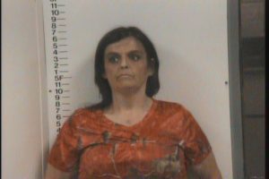 Hall, Peggy Renee - Resisting Arrest; Public Intoxication