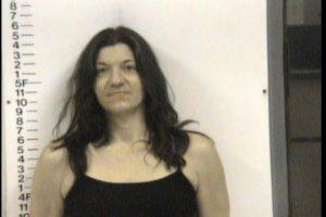 Dalton, Holly Renee - GS Violation of Probation Theft