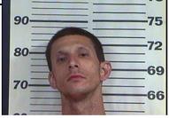 Fisher, Brian Lewis - Resisting Arrest; Violation of Probation