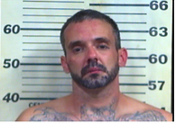 Williams, Brandon Lee - Resising Arrest; Evading Arrest