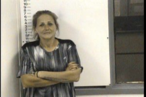 Arnold, Angela Dawn - Public Intoxication; Disorderly Conduct
