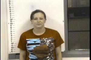 Hicks, Danielle Nicole - Violation of Probation Criminal X3