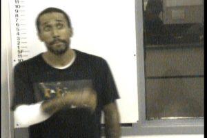 Hornback, Jonathan - Evading Arrest; Domestic Assault
