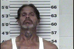 Johnson, Brian Lee - Driving on Revoked; Poss Waspon to go Armed; Felony Poss Drug Para