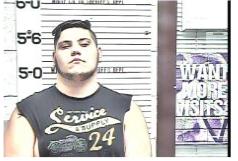Johnson, Raymond Allan - Violation of ProbationX2