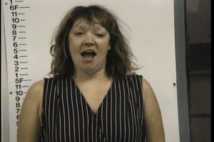 Wilson, Mandy Marie - Shoplifting Theft of Property; Public Intoxication