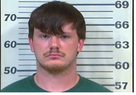 Hodgin, Richard Tyler - Reckless Endangerment; Evading Arrest