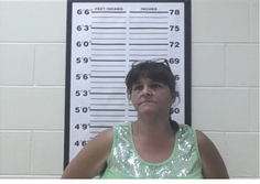 Fentress County Mugshots 7 17 17 Upper Cumberland Reporter
