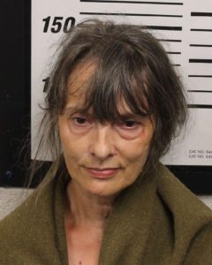 Long, Lois Ann - Public Intoxication