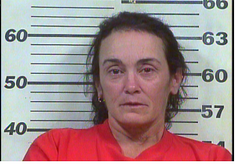 Owens, Amy Aileen - Vio Implied Consent Law; DUI