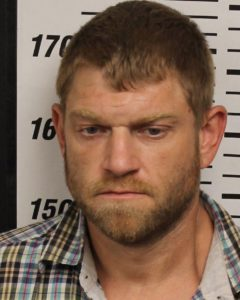 Reese, Brandon L - Poss Drug Para; Simple Poss SCH II; Theft of Property over $1,000