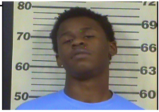Johnson, Lavan Tremayne Jr - Hold Knox County