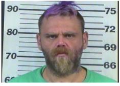 Webb, Anthony Wayne - Violatio of Probation