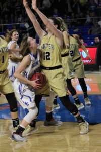 Macon County Girls Basketball State Championship 3-10-18-16
