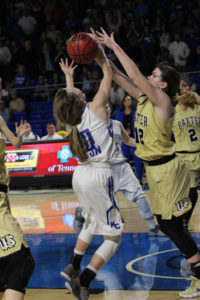 Macon County Girls Basketball State Championship 3-10-18-19