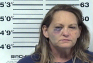 Tammy Hailey-Criminal Trespassing-Theft