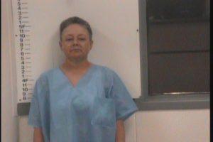 Heinfield, Kristin Ann - Domestic Assault