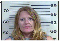 Lee, Charolette Ann - Hold for Rhea County