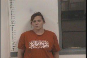 Swallows, Paula Jade - GS Violation of Probation Theft