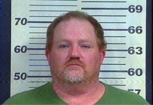 Bostic, David - Domestic Assault (Warrantless Arrest)