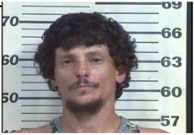 Hale, Justin Lee - No Drivers License X 4; Driving on Revoked