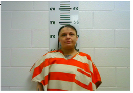 Barnes, Sherry Kay - Holding Inmate for Court; CC Violation of Probation