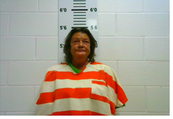 Downs, Deena Fawn - Holding for another county on Warrant