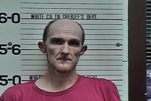 Jonathan Young-Violation of Probation