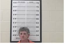 Violes, Linda Gail - Criminal Violation of Probation