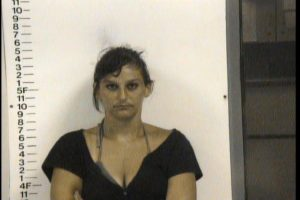 Mitarnowski, Jessica Lee - Driving on Revoked Suspended License