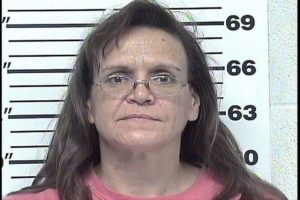 Mitchell, Lynn M - Allowing Animals to Run at Large