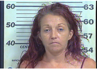 Stokes, Penny Marie - Theft of Property