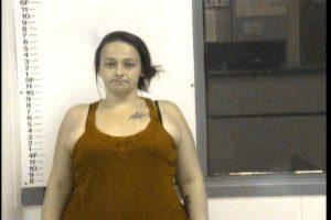 Bires, Abbie Jo - GS Violation of Probation Theft