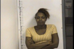 Day,Nechelle Renee - Evading Arrest; Reckless Endangerment; Mfg Del.Sel Poss Controlled Sub; Driving on Revoked Suspended License
