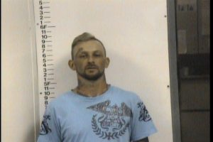 Demarini, Michael Scott - CC Violation of Probation Att. To Initiate Mfg Meth