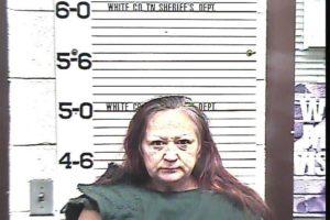 Green, Rhonda Gail - Disorderly Conduct; Resisting Arrest; Domestic Assault