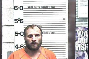 Johnson, Buddy Allen - Felony Poss of SCH II Drugs; Evading Arrest